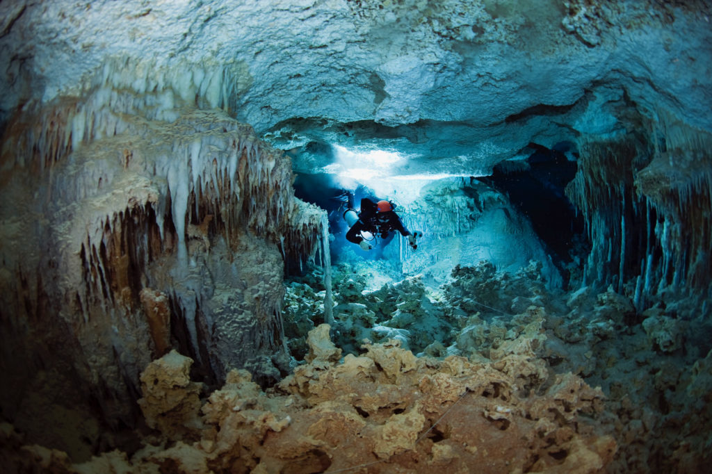 Abaco diving