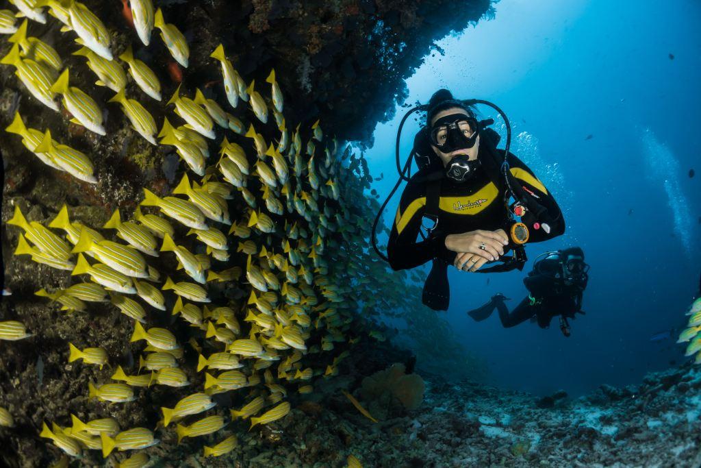 Drift scuba diving