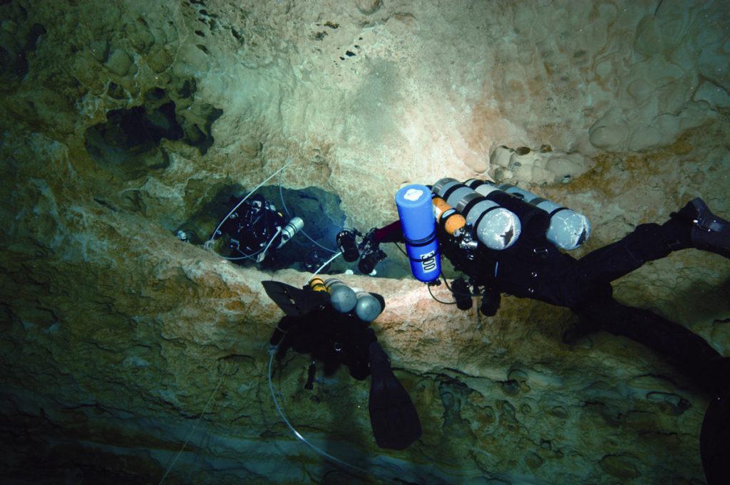 Wakulla Springs diving