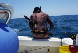 Safe spearfishing: Rules that save your life