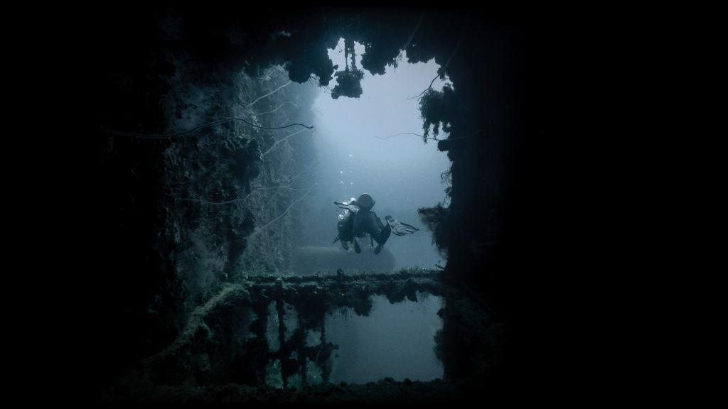 scuba diving at night