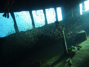 Safe wreck diving