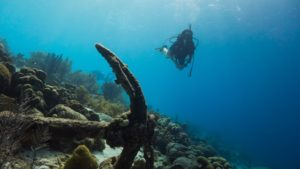 7 great places for night diving