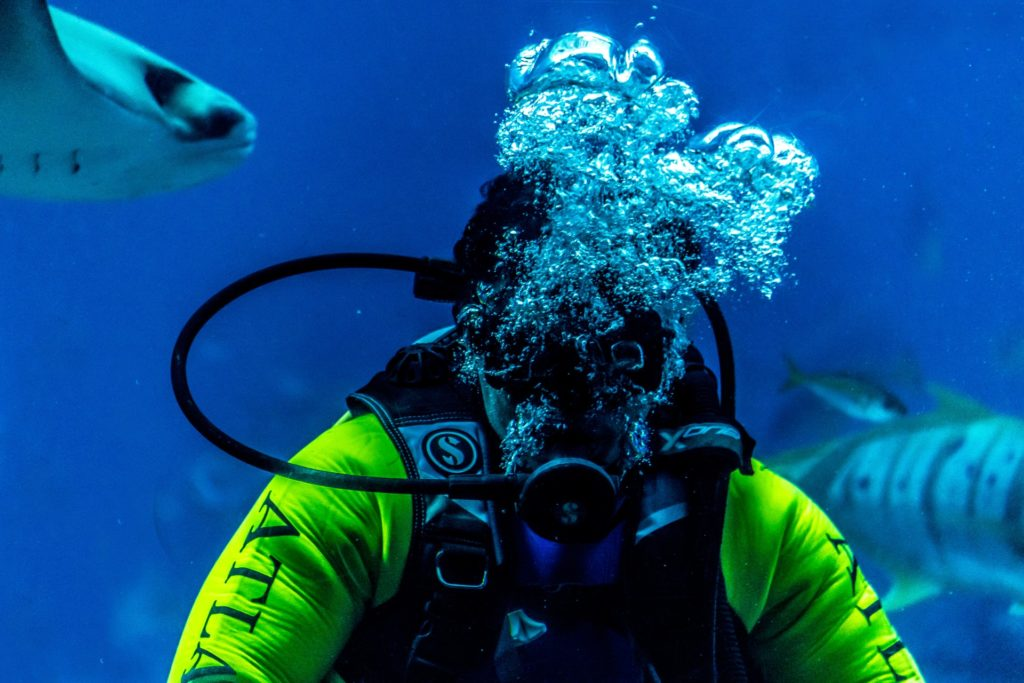 Diving reduces headache
