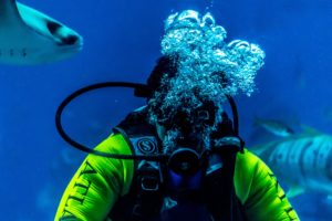 Diving reduces headache by 30 percent